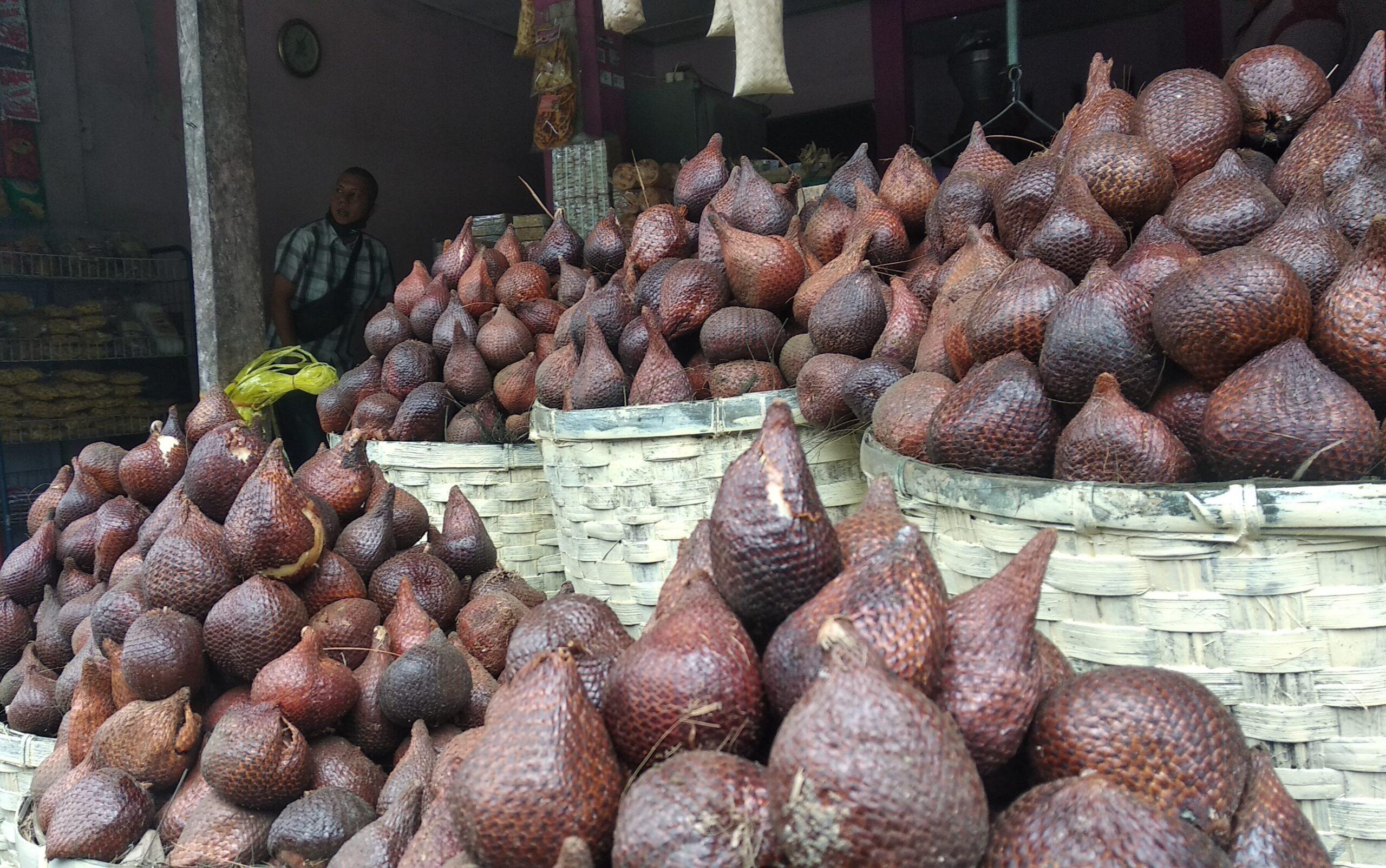 Pulang Kampung ke Padangsidimpuan, Jangan Lupa Bawa Oleh-Oleh Salak
