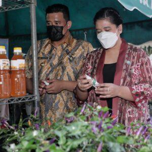 Pameran Bursa Tanaman Hias Dalam Rangka Peringatan HKG PKK ke-49 Kota Medan